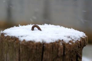 The first snowfall on an old fencepost