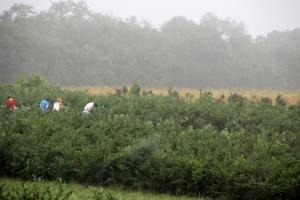 It was very foggy & wet
