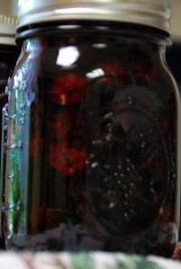 Pickeld Berries