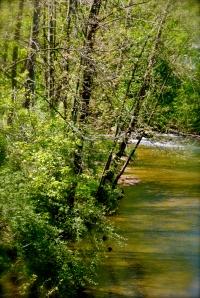 Taken from a bridge overlooking the Patapsco River near Sykesville, Maryland